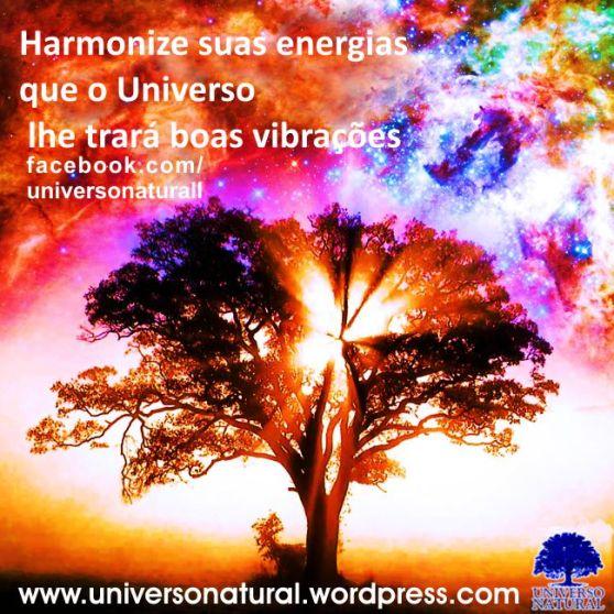 Harmonize suas energias que o Universo lhe trará boas vibrações